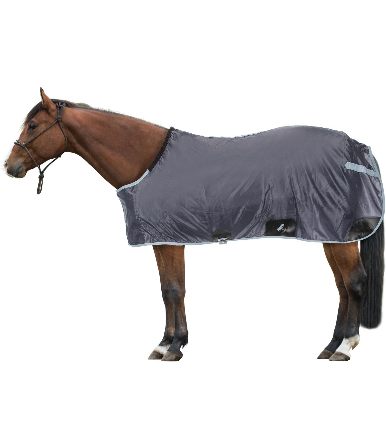 Stable Sheet