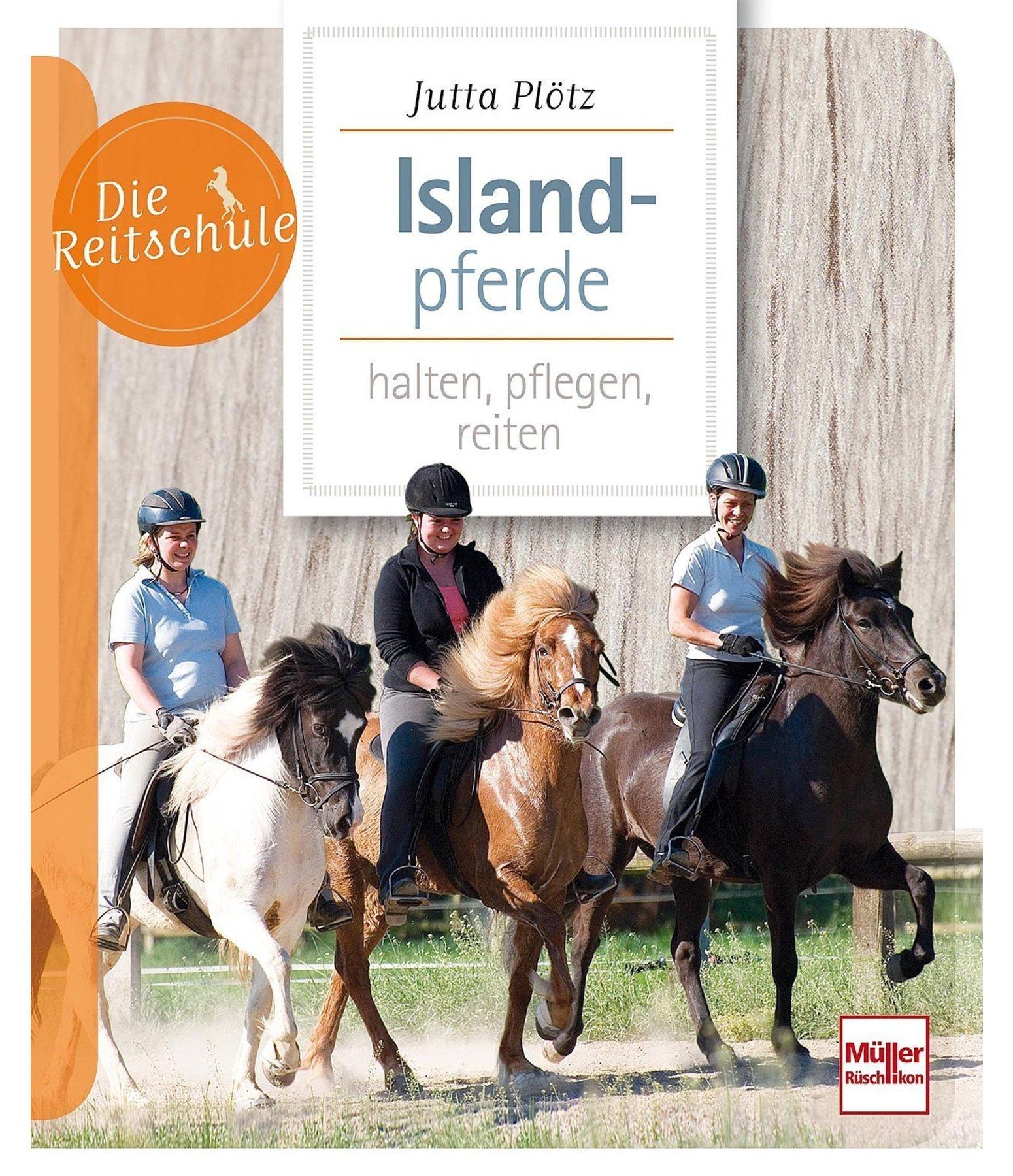 islandpferde reiten pferderassen zucht kr mer pferdesport. Black Bedroom Furniture Sets. Home Design Ideas