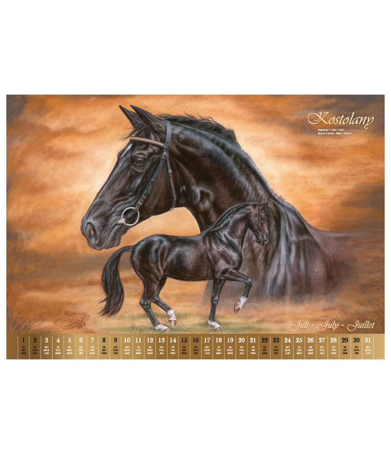 vererberlegenden kalender 2019 kalender kr mer pferdesport. Black Bedroom Furniture Sets. Home Design Ideas
