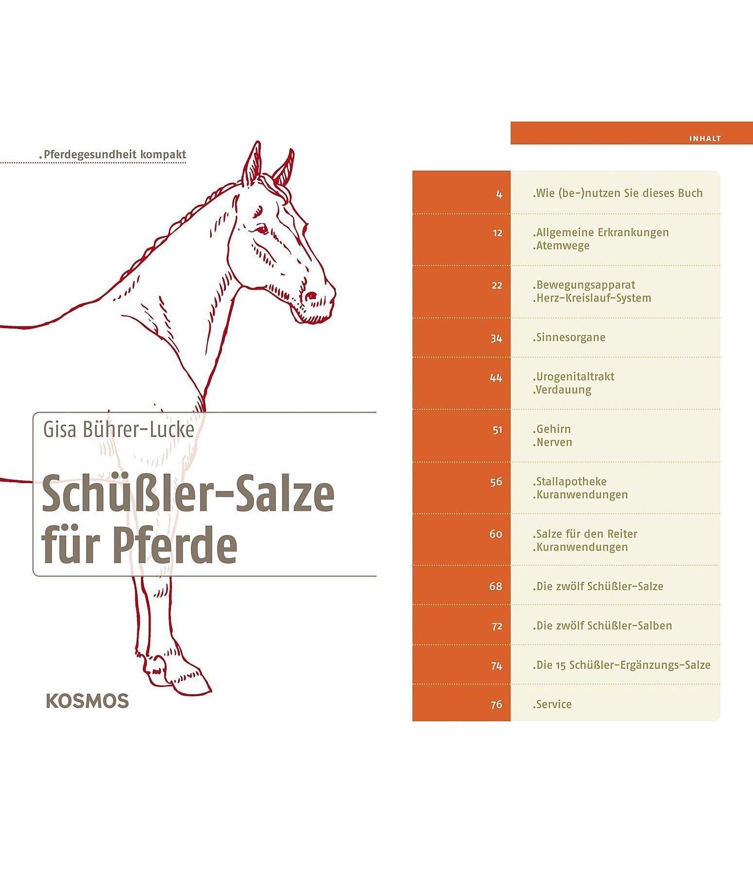 sch ler salze f r pferde gesundheit kr mer pferdesport. Black Bedroom Furniture Sets. Home Design Ideas