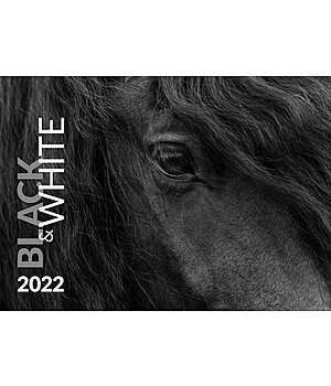 Equino Media Black & White Kunstkalender 2020 - 402418