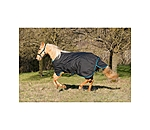 HORSEWARE Turnout Medium by STONEDEEK - 182454-135-S - 3