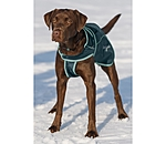 sugar dog 2 in 1 Nylon-Hundemantel Ally - 230792-3XS-GL - 4