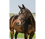 HORSEWARE RAMBO Micklem Competition Bridle - 320464-C-S - 4