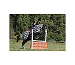 Bucas Buzz-off Riding Zebra - 421696-S-WS - 2