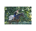 Bucas Buzz-off Riding Zebra - 421696-S-WS - 3