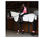 STEEDS Reflex-Ausreitset Highlight - 422150-P-GR - 5