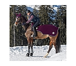 Felix Bühler Fleece-Ausreitdecke Classic Collection - 422225-135-AU - 4
