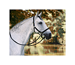 SHOWMASTER Training & Riding Halfter - 440542-F-S - 2