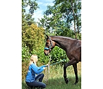 Horse Walking Multifunktionszaum - 540159-P-A - 2