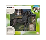 Schleich  Playset Friese - 660760 - 2